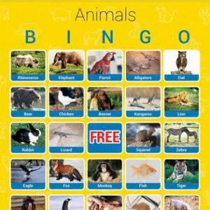 Dieren Bingo  - 094 -