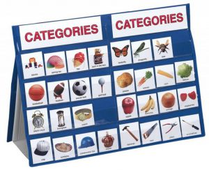 Categoriseren Leer sorteren met 100 kaarten en tafelstandaard  - 030 -